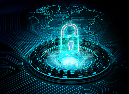 Gestione Privacy E Vulnerability Assessment